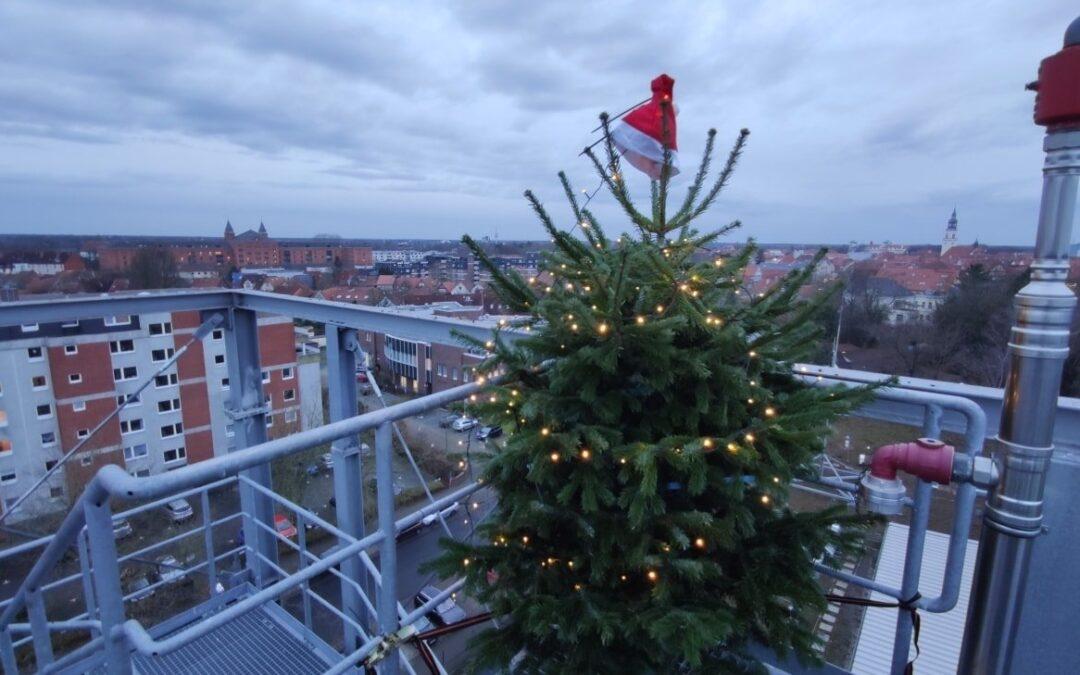 Steht euer Weihnachtsbaum auch schon?