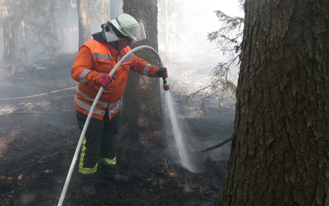 Hohe Waldbrandgefahr im Landkreis